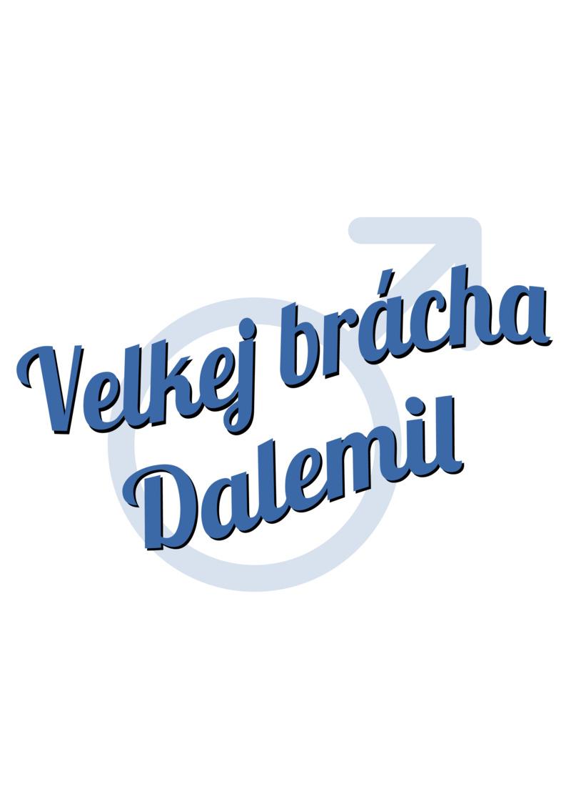 Tričko Velkej brácha Dalemil